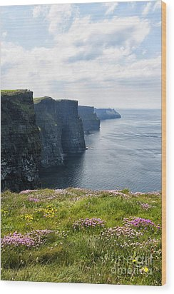 Cliffs Of Moher In Spring Wood Print by Cheryl Davis