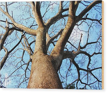 Climb To The Sky Wood Print by Rosvin Des Bouillons