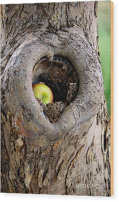 Close To The Heart Wood Print by Vicki Pelham