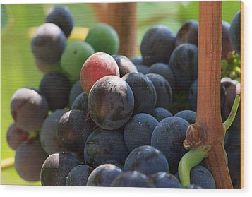Close Up Of Wine Grapes Wood Print by Dina Calvarese