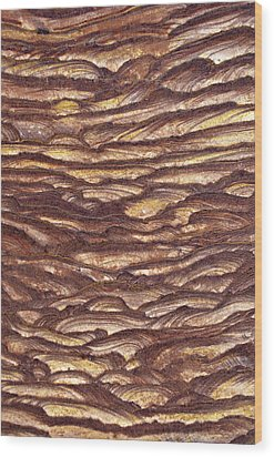 Closeup Of Sandstone Patterns, Petra, Jordan Wood Print by Fred Bruemmer