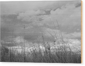 Wood Print featuring the photograph Cloud Watching by Kathleen Grace
