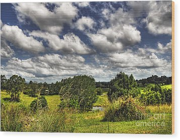 Clouds Floating Over Green Countryside Wood Print by Kaye Menner