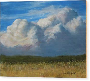 Clouds Over The Meadow Wood Print by Jack Skinner
