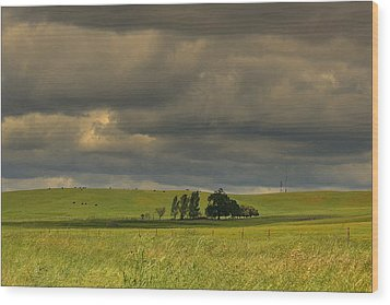 Wood Print featuring the photograph Clouds by Rima Biswas