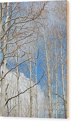 Cloudy Aspen Sky Wood Print by Donna Greene