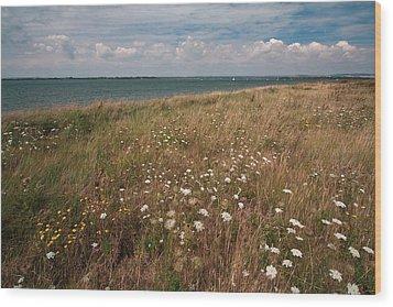 Coastal Flowers Wood Print by Shirley Mitchell
