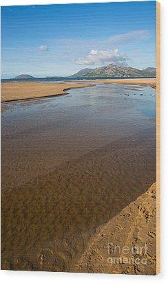 Coastal View Ireland Wood Print by Andrew  Michael