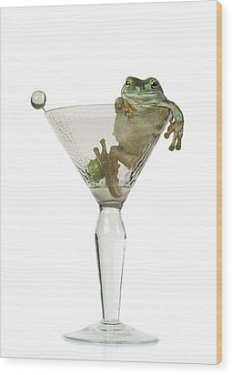 Cocktail Frog Wood Print by Darwin Wiggett