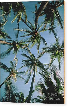 Coconut Palms Wood Print by Magrath Photography