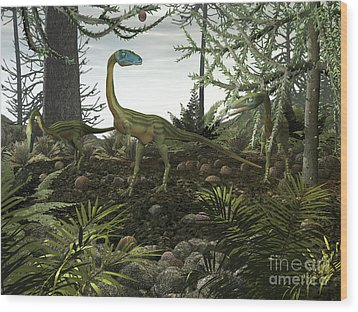 Coelophysis Dinosaurs Walk Amongst Wood Print by Walter Myers