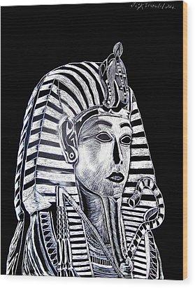 Coffin Of The King Wood Print by Lisa Brandel