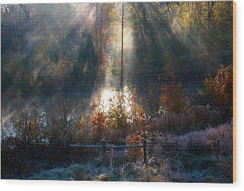 Cold Mist Iv Wood Print by Michael Tipton