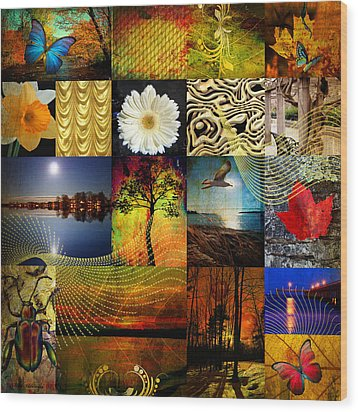 Collage Of Colors Wood Print by Mark Ashkenazi