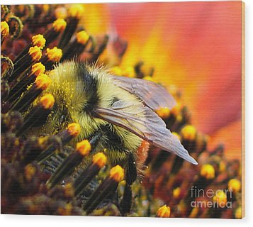 Collecting Pollen Wood Print by Vivian Christopher