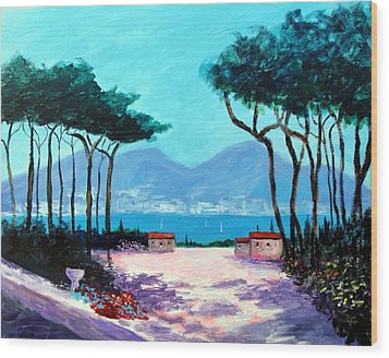 Color And Light Of The Mediterranean Wood Print by Larry Cirigliano