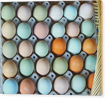 Color Eggs  Wood Print