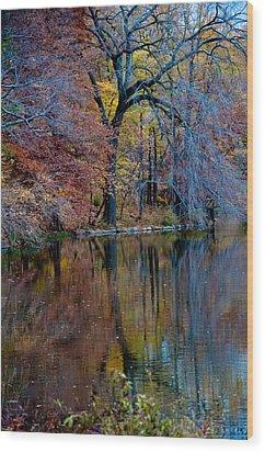 Color Fall Wood Print by Martin Goldberg