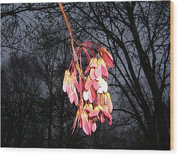 Wood Print featuring the photograph Color On A Gloomy Day by George Bostian