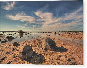 Color Rockscape Wood Print by Coby Cooper