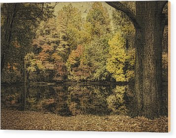 Wood Print featuring the photograph Color Splash by Mary Timman