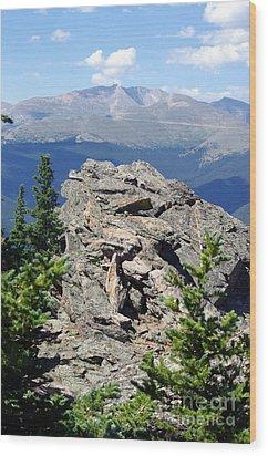 Wood Print featuring the photograph Colorado 11 by Deniece Platt