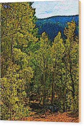 Colorado Aspens Wood Print by Howard Perry