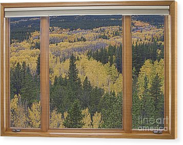 Colorado Autumn Picture Window Frame Art Photos Wood Print by James BO  Insogna