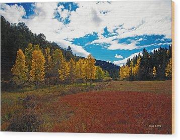 Colorado Mountain Autumn View Wood Print by Stephen  Johnson