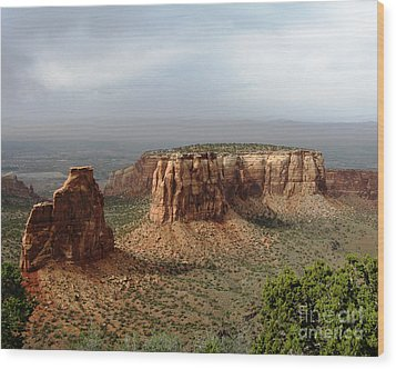 Colorado National Monument Wood Print by Patricia Januszkiewicz