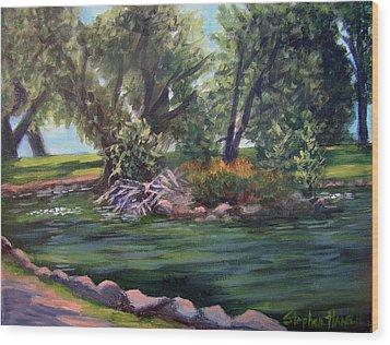 Colorado Pond Wood Print by Stephen  Hanson