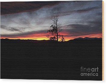 Colorado Sunset Wood Print by Angelique Olin