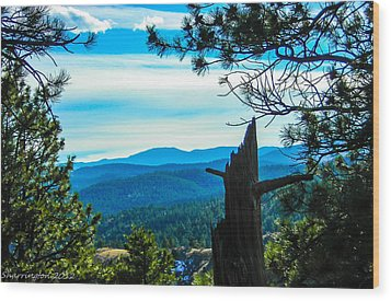 Wood Print featuring the photograph Colorado View by Shannon Harrington