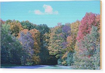 Colored Trees Wood Print by Dyana Rzentkowski