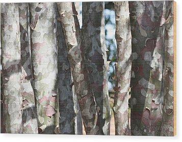 Colorful Bark Wood Print