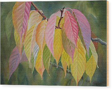 Colorful Fall Leaves Wood Print by Sharon Freeman