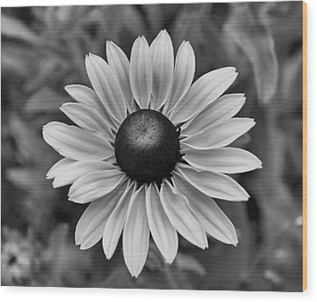 Wood Print featuring the photograph Colorless by Brian Hughes