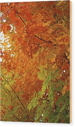 Colors Of Autumn Wood Print by Sylvia Hart