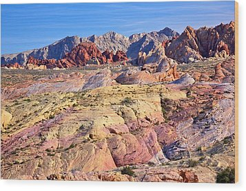 Wood Print featuring the photograph Colors Of The Valley Of Fire by Joe Urbz
