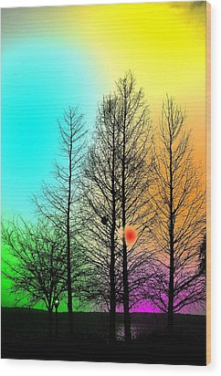 Coluers De La Soiree Wood Print by Robert Festerling