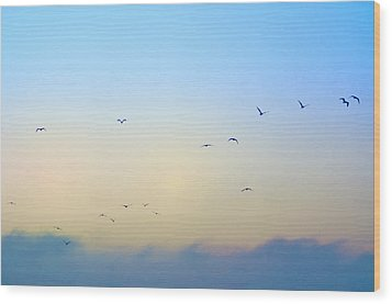 Come Fly With Me Wood Print by Bill Cannon
