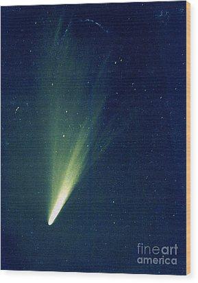Comet West, 1976 Wood Print by Science Source