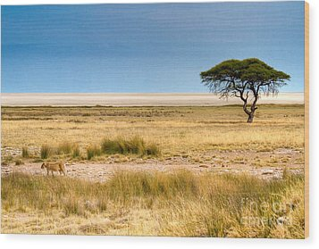 Wood Print featuring the photograph Coming Home by Juergen Klust