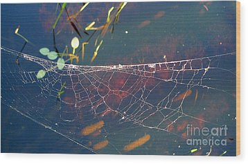 Wood Print featuring the photograph Complexity Of The Web by Nina Prommer