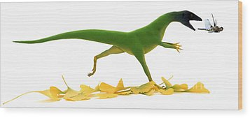 Compsognathus Wood Print by Jane Burton and Warren Photographic and Photo Researchers