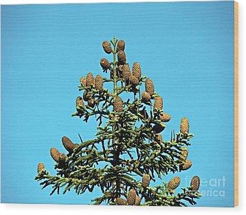 Cones Wood Print by Nick Kloepping
