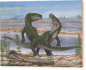 Confrontation Between Two Prehistoric Wood Print by Sergey Krasovskiy