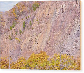 Wood Print featuring the photograph Connecticut Autumn Granite by Cindy Lee Longhini