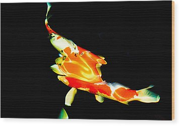 Contemporary Koi Photo Painting Wood Print