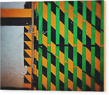 Contradiction Wood Print by Skip Hunt